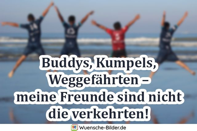 Buddys, Kumpels, Weggefährten – meine Freunde