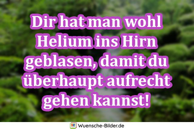 Dir hat man wohl Helium