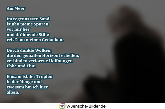Am Meer  Im regennassen Sand