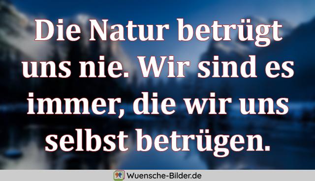 Die Natur betrügt uns nie.