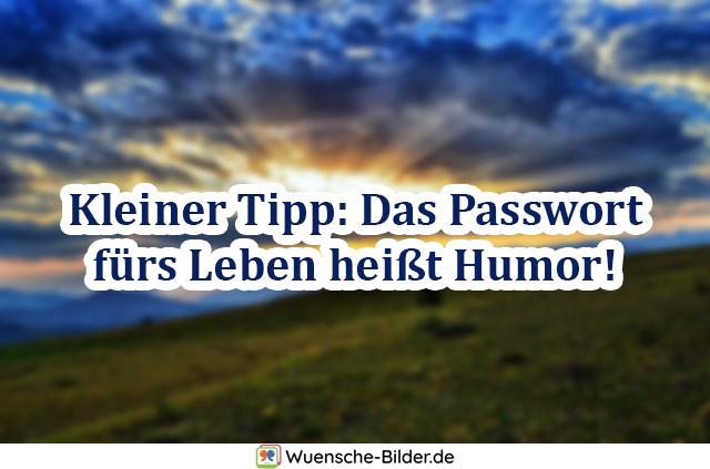 Kleiner Tipp: Das Passwort fürs