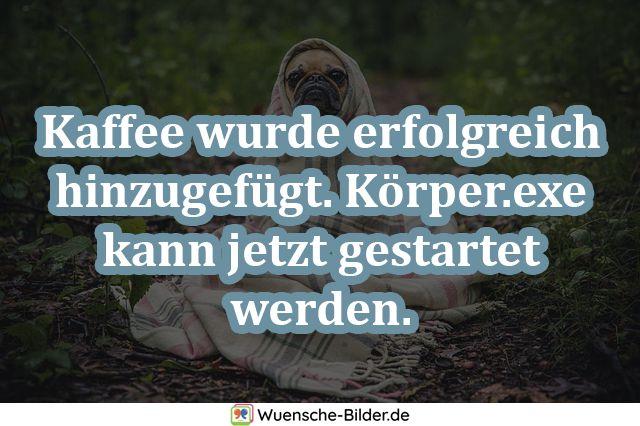 Kaffee wurde erfolgreich hinzugefügt. Körper