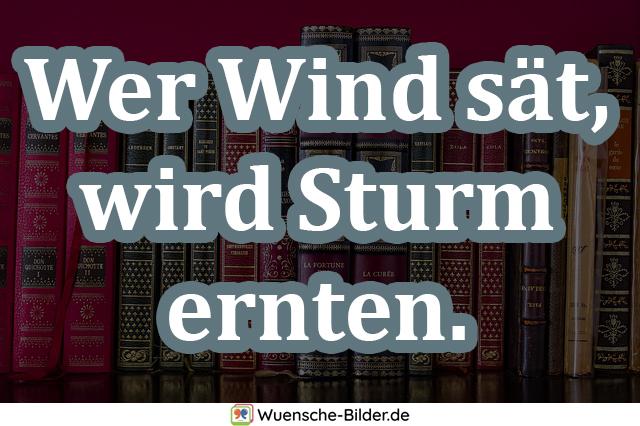 Wer Wind sät, wird Sturm