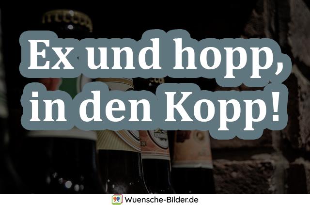 Ex und hopp, in den