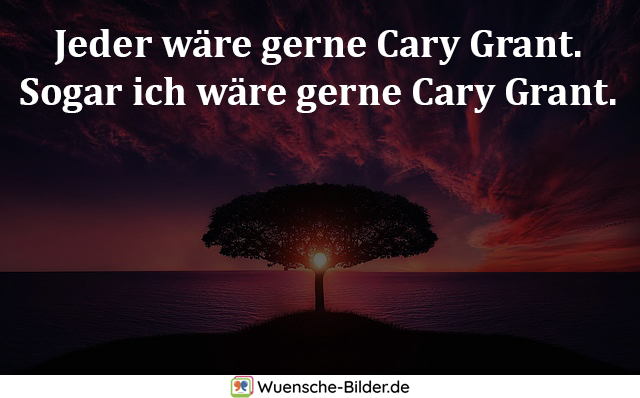 Jeder wäre gerne Cary Grant