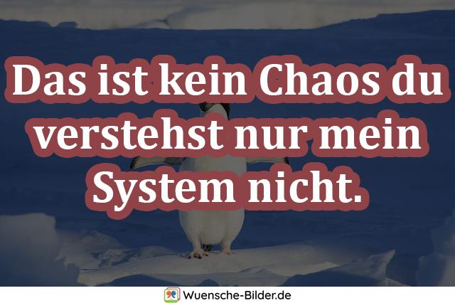 Das ist kein Chaos du