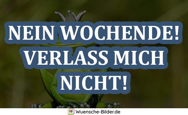 NEIN WOCHENDE! VERLASS MICH NICHT!