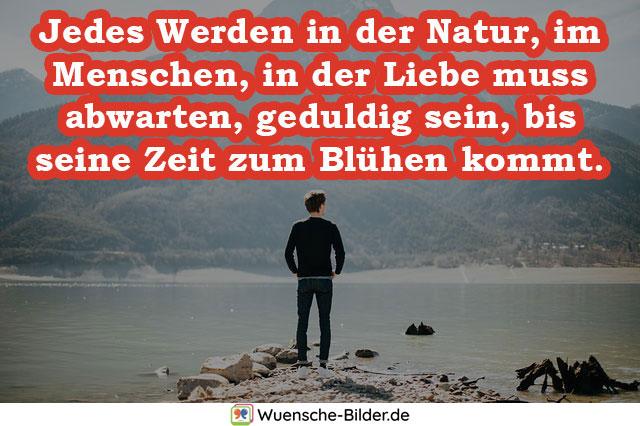 Jedes Werden in der Natur