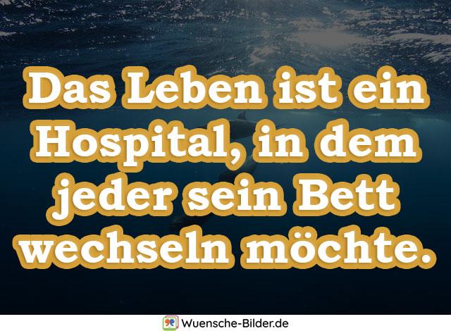 Das Leben ist ein Hospital