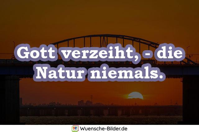 Gott verzeiht, – die Natur niemals.