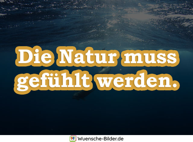 Die Natur muss gefühlt werden.
