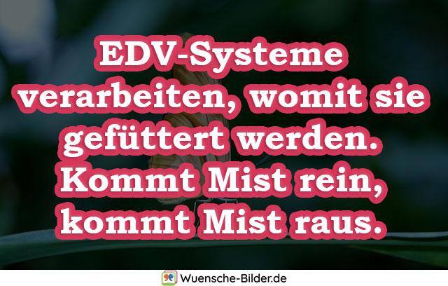 EDV-Systeme verarbeiten, womit sie gefüttert