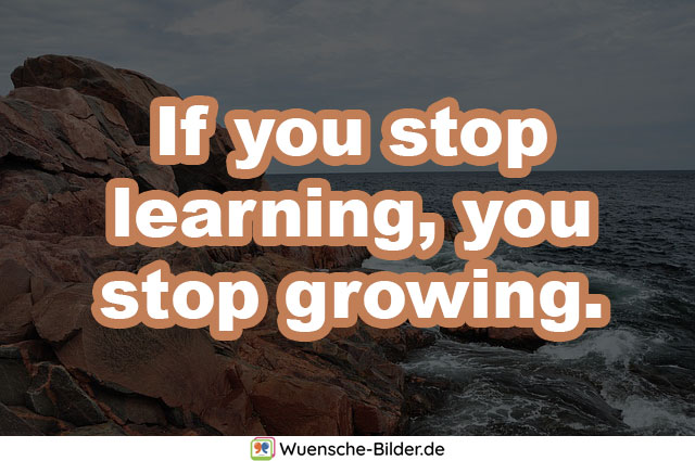 If you stop learning, you